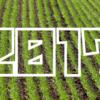 【2017年】「耕地面積」ランキング