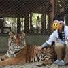 タイ、ミャンマー旅行*11月上旬の服装、一人旅分のカバン