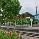 「集集線 」を線路沿いの踏切から、ならびに「集集駅」駅前、プラットホームから撮り鉄でした。。。
