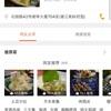 南京でも食べられる  美味しい日本食レストラン