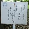 万葉歌碑を訪ねて(その529,530,531)―奈良市法蓮佐保山 万葉の苑(32,33,34)―万葉集 巻十 一九七三、二一〇四、二一八八