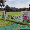 2018年7月の「みやがせ花の日」:マリーゴールドとアジサイ