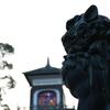 金沢のビジネス街にある神社の狛犬はスタイリッシュだった