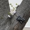 4/12水曜日・箱根の温泉に行きたいね~