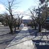 伊豆国一宮 三嶋大社に参拝しました。