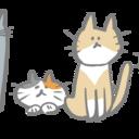 猫大好き主婦がブログを続けるとどんな変化がおきるのか