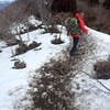 【冬山ハイク?@武奈ヶ岳(坊村ピストン)②】ノーアイゼンで行けた武奈ヶ岳。踏み抜き注意です。