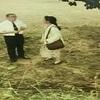 9-10/42-10 TBSテレビドラマ 「悲しくてやりきれない」 山田太一作 高橋一郎演出 こまつ座の時代(アングラの帝王から新劇へ)すま けい・ さようなら、そしてこんにちは 幻劇場