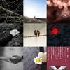 Twitter、アメブロ、Instagram、Facebookに作家「琴華」さんの9/16の詩をご紹介しました。