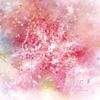 Sasanquaさん「音の花束」ミニアルバム ジャケットアートワーク 1/20レコ発@ENTER 心斎橋