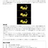 第41回企画展「ORIGAMI」@とらや 東京ミッドタウン店ギャラリー