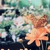 ボルネオの蝶(ちょう)