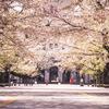 Snapshot ~『桜 2021』 #15