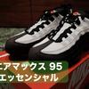 NIKE『エアマックス 95』久しぶりに靴を購入した(日常)