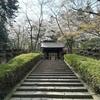 今年の春に宮城県にある伊達政宗公の霊屋:瑞鳳殿の周辺で撮った桜の写真(瑞鳳殿の写真はありません)+おまけの写真