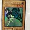 大掃除をしていたら、約20年前の遊戯王カードが大量に!!レアカード多数!!~レアカード紹介モンスター編:PART8、「妖精の贈りもの、サイバティックワイバーン、二頭を持つキング・レックス、ガーネシア・エレファンティス、双頭の雷龍」~
