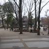 【聖地巡礼】アクタージュ@東京都・井の頭公園