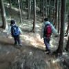 新城ラリー2008観戦&浜名湖でウナギ