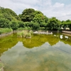 武蔵の池(東京都国分寺)