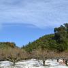 いつもの景色が「別世界!」・・初雪。