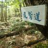 古道・尾鷲道をたどって、絶景と静寂のコブシ嶺へ