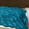 新しいシェアハウスで大活躍中の寝袋とGo To イート