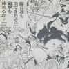 ワンピースブログ[五十七巻] 第553話〝頂上決戦〟
