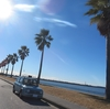 No.105【千葉県】まるでカリフォルニア!?「千葉フォルニア」は車&バイク好きの楽園だ!