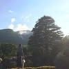 【箱根旅行記②】オルタナ音楽と行く箱根1泊2日旅行記【おすすめ強羅温泉】