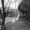 Photo No.76