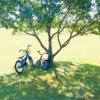 格安で加入できる自転車保険を検討してみた