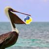 Python製の静的サイトジェネレーター「Pelican」を試してみた