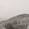 2016年末一人旅 第四週(220)久慈の雪景色9