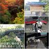 吉祥寺から甲州街道 多摩御陵 小原宿 日本三奇橋『猿橋』へ 🐒