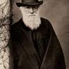 ダーウィンの不安と病気