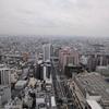 大阪通天閣の屋上に咲く一輪のデジタルサイネージ