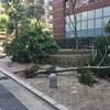 台風24号大丈夫でしたか?災害への準備。