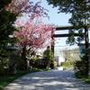 西野神社定期総会 & 春季例祭