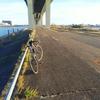 荒川左岸ライド 笹目橋~河口まで