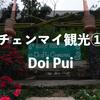 チェンマイ旅行記①Doi Pui(ドイプイ)