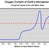アマゾンの熱帯雨林で火災、大気中酸素濃度へ影響は出るのか。
