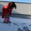 融雪剤と凍結防止剤