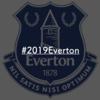 【サッカー】2019年はこの布陣で戦え!残りの今シーズンを戦うエヴァートンへの提案。【プレミアリーグ】