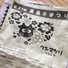 黒島牛祭り 寒かったけどそれなりに楽しみました。Kuroshima Cow festival, Kuroshima, Okinawa.