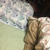 【クイズ】猫はどこでしょう?