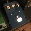 pigdog pedal spectra&D.A.M buzzotron
