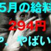 介護職の給料(2017年5月分)が294円で安いし真剣に将来焦ってきた話。