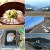 伊豆は美味いものの宝庫・新鮮魚介類から 絶品「もち豚」とんかつ 🐽