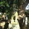 井芹日枝神社の狛犬