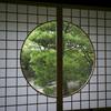 小雨の光明院で心落ち着く庭園に癒される@2021